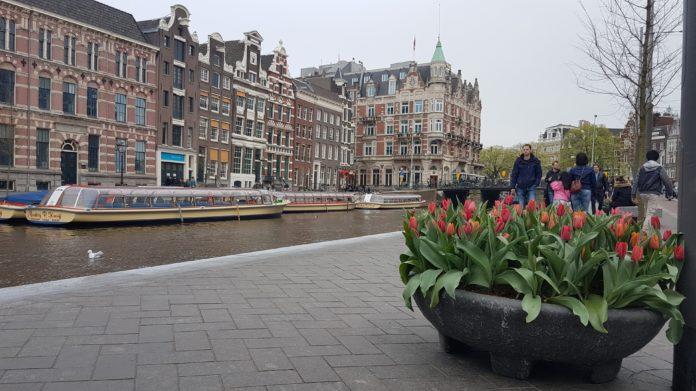 Tulp Festival Amsterdam van start