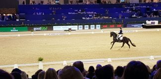 Ilse van Cranenbroek wint ticket Jumping Amsterdam 2018