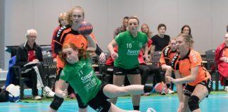 Goals Housheer en Rozemalen in uitzwaaiwedstrijd Oranje