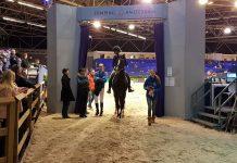 Jumping Amsterdam zoekt deelnemers Bixie-estafette tijdens Novotel Jumpertjes Kinderochtend