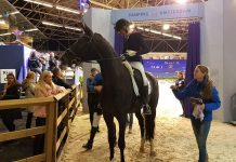 Britt Dekker te paard op Novotel Jumpertjes Kinderochtend