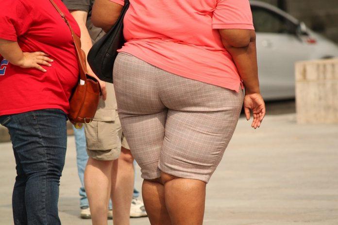 Behandelprogramma LEFF voor kinderen met overgewicht en obesitas effectief