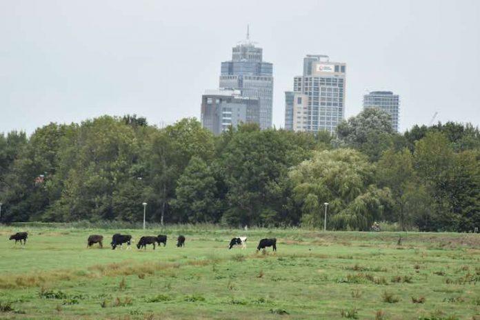 Amsterdam - Leuke dingen doen – donderdag 30 augustus
