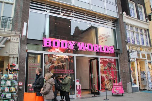 BODY WORLDS: The Happiness Project