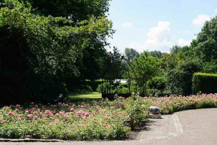 Amsterdam - Leuke dingen doen – zondag 2 september