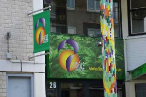 Jungle Amsterdam - Duurzaamheidsmarkt Oost