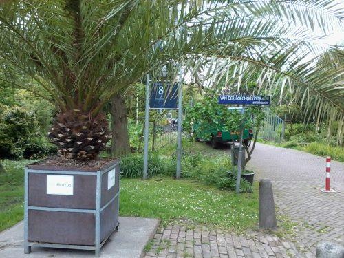 Botanische Tuin Amsterdam : Gezellige wintermarkt in de botanische tuin zuidas vrije tijd