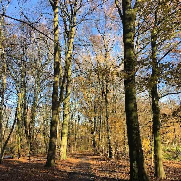 Amsterdam - Leuke dingen doen weekend 2 en 3 maart 2019