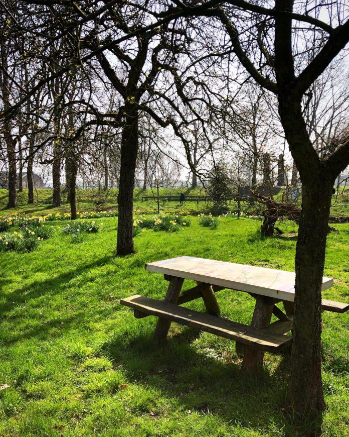Heerlijk picknicken in pittoresk 'GTST-park' onder de rook van Amsterdam