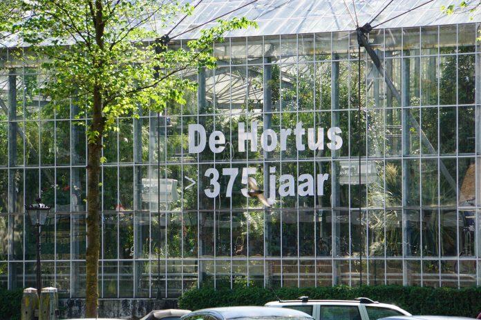 Wat kun je doen tijdens Moederdag in Amsterdam?