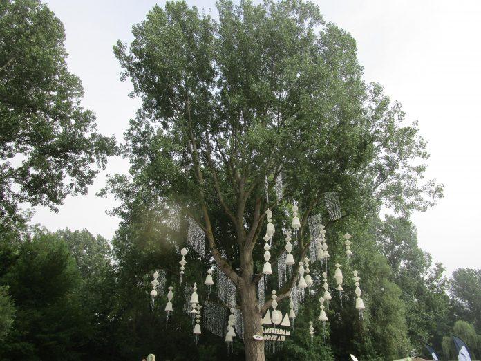 Amsterdam Open Air start bewustmakingscampagne