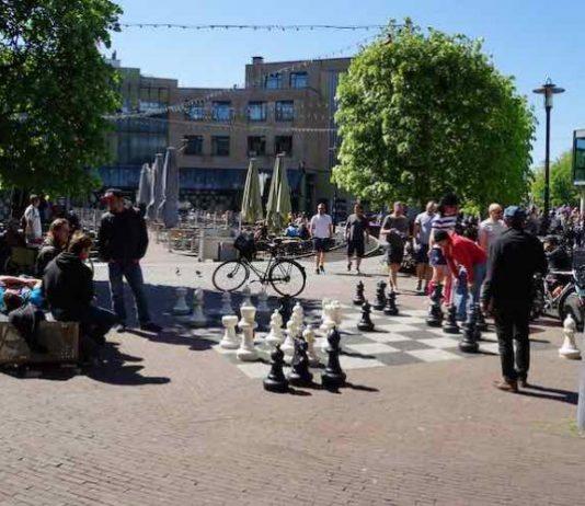 Leuke dingen doen - Schaakfestival