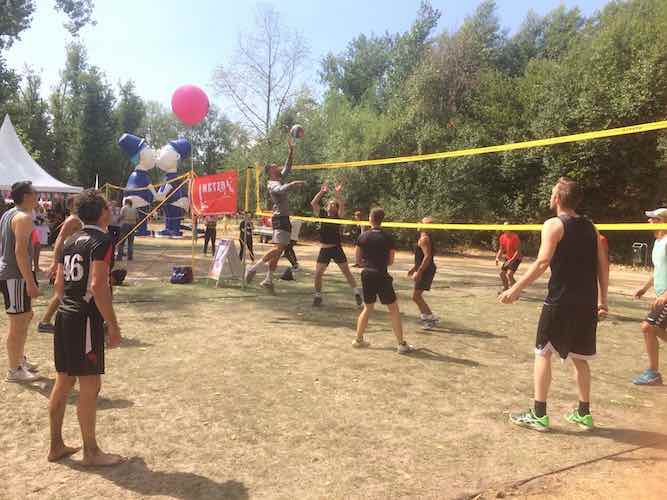 Netzo Volleybal: Come Play with Us