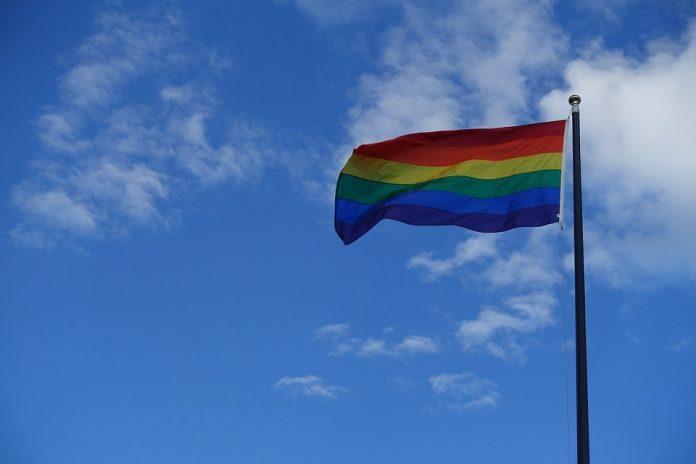 De PVDA heeft ook actie gevoerd tijdens de Antwerp Pride. In het Belgische Antwerpen werd er een statement gemaakt tegen het verbod voor het dragen van regenboogpins voor Antwerpse loketbedienden.