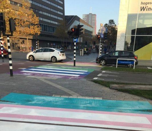 """Suzanne van de Laar is net gebeld door de New York Times, één van 's werelds meest bekende media, maar van een 'eer' wilde ze niks weten. """"Het zou niet nodig moeten zijn, maar helaas is het nog wel nodig"""", vertelt Van de Laar over het eerste Transgender-pad ter wereld dat vannacht is aangelegd in Almere en zaterdag officieel wordt geopend tijdens de allereerste Winter Pride in Almere."""
