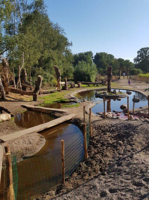 Het verhaal achter stadslandbouwproject NoordOogts in Amsterdam Noord
