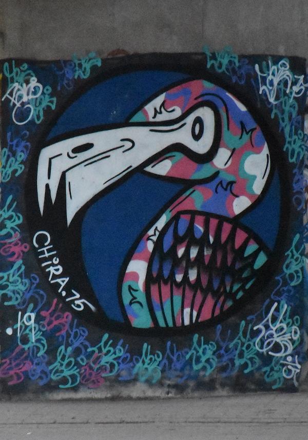 In beeld: Graffiti in Amsterdam