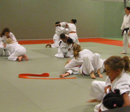 Het verhaal van Judovereniging Tenkaichi