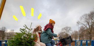 Nieuw recyclepunt voor kerstbomen in De Baarsjes