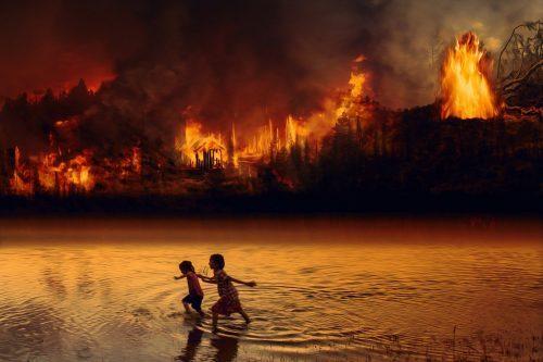 Bosbranden houden ook een winterslaap