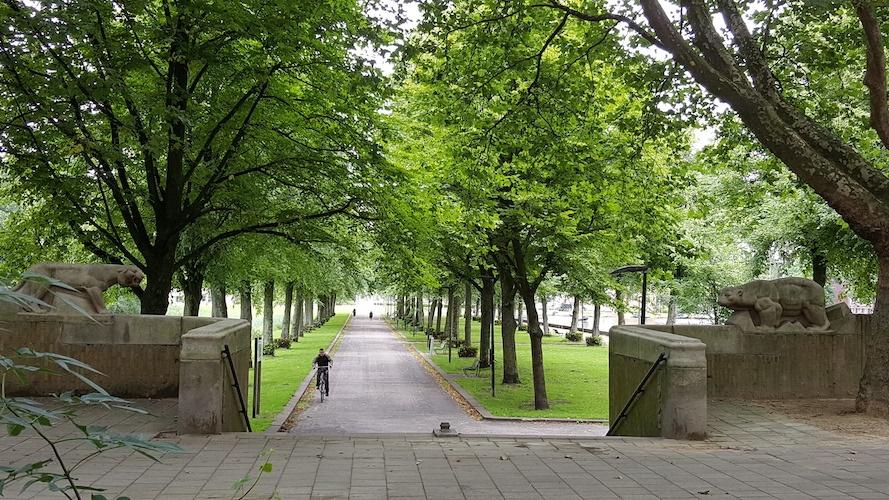 Erasmuspark