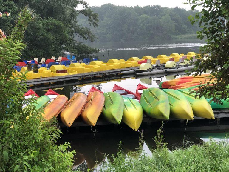 Kano Verhuur Amsterdamse bos